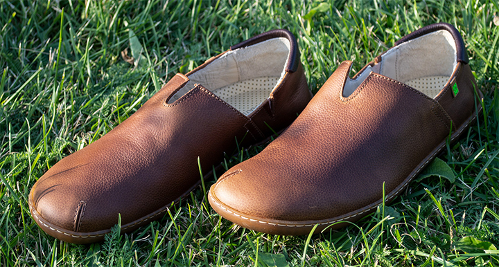 El Naturalista n275 El Viajero Wood-Brown Slipper